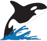 ORCARSGLOGO
